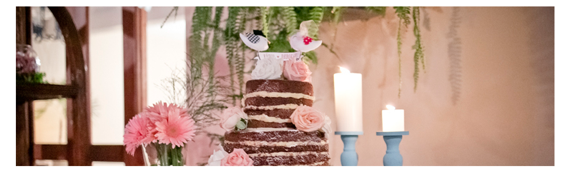 mesaeafins_banner-mini-weddings1